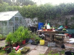 Greenhouse area